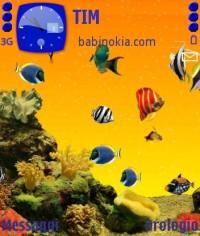 Темы для Nokia N73 ME